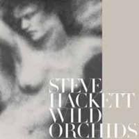 Steve Hackett - Wild Orchid
