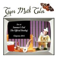 Tiger Moth Tales - Live At Summer's End